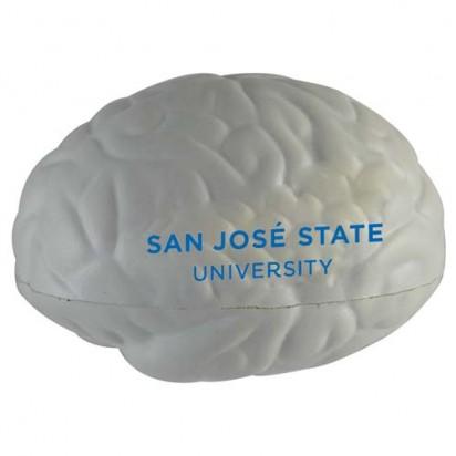 Gehirn klein